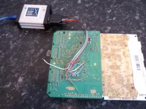 DSC00809 (Small)